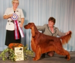 This is Robert Taylor .... winning Best In Show