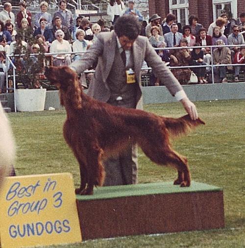 1982 Royal Montana