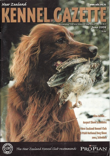 IRISH SETTER COVER