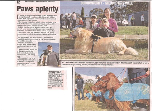 Million Paws Walk in the Goulburn Post 001