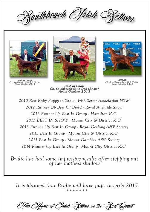 Sullivan dogs 2014-4 -2