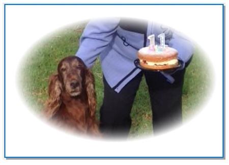 11th birthday cake2