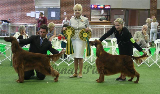 ~ irish show BIS & RU 2009 with judge