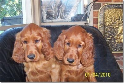 Morgan & Kendra100_3783