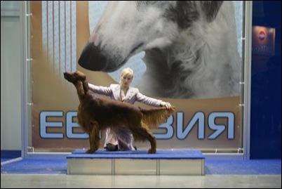 flyer eurasia