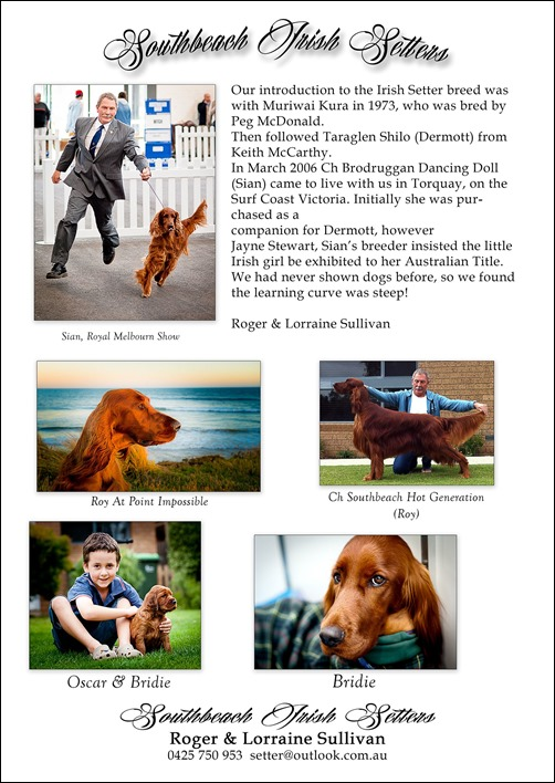 Sullivan dogs 2014-4 -3 (2)